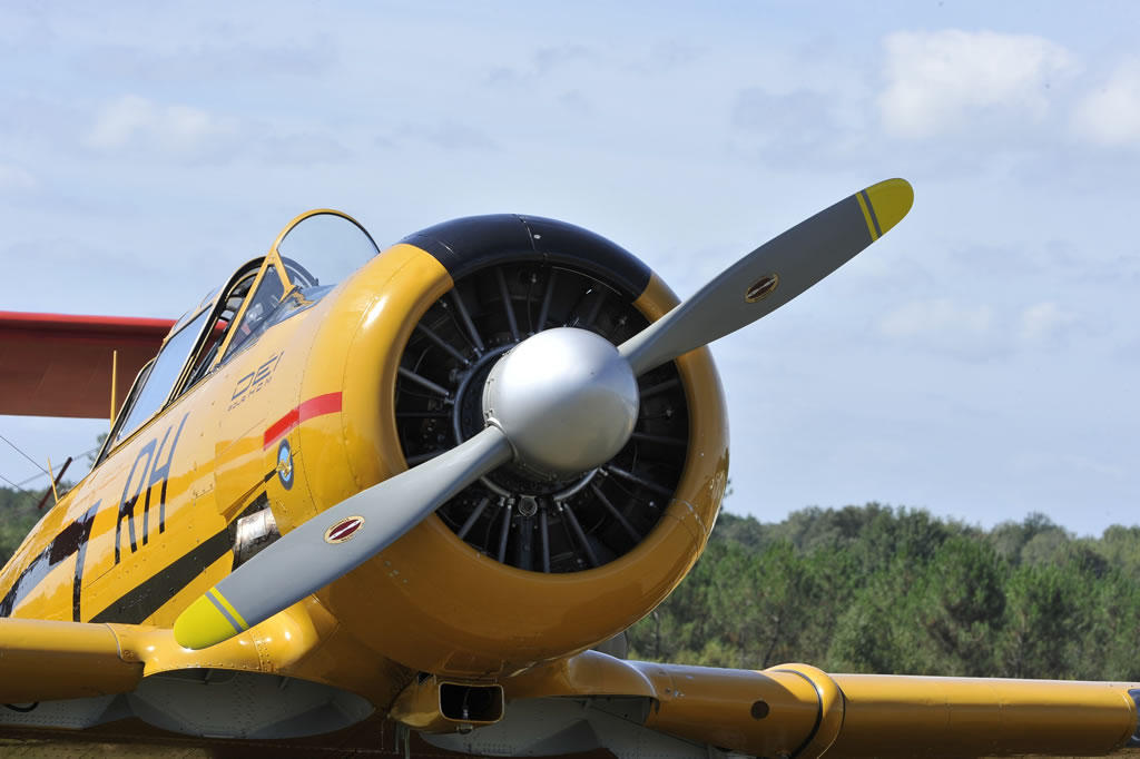 Nose view of T-6 Texan, Registration F-AZIB, Belvès, France